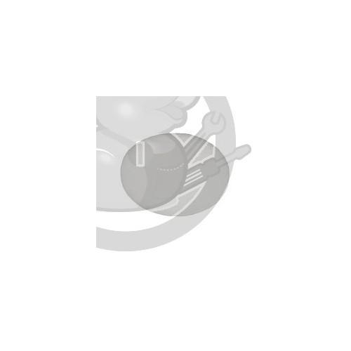 Filtre apres moteur Dyson, 91895201